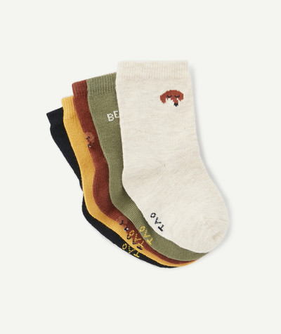 Accessories radius - FIVE PAIRS OF PLAIN FOX SOCKS