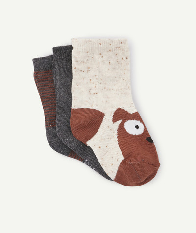 Accessories radius - PACK OF 3 PAIRS OF SOCKS IN BROWN, GREY AND CREAM