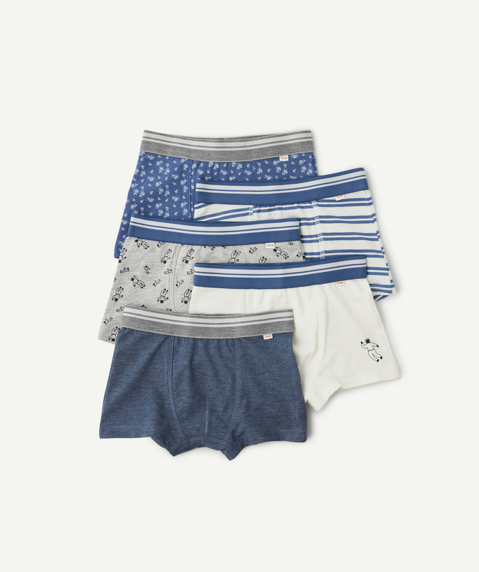 Underwear radius - FIVE PAIRS OF BLUE AND WHITE ASTRONAUT BOXER SHORTS