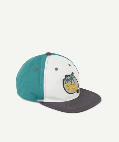All collection radius - CAP WITH A GREY VISOR