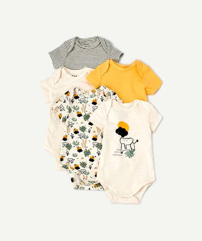 Newborn Boy radius - FIVE SHORT-SLEEVED SAVANNAH BODIES IN ORGANIC COTTON