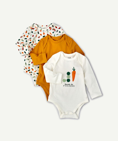 Newborn Boy radius - THREE BODIES IN ORGANIC COTTON WITH PRINTED VEGETABLES