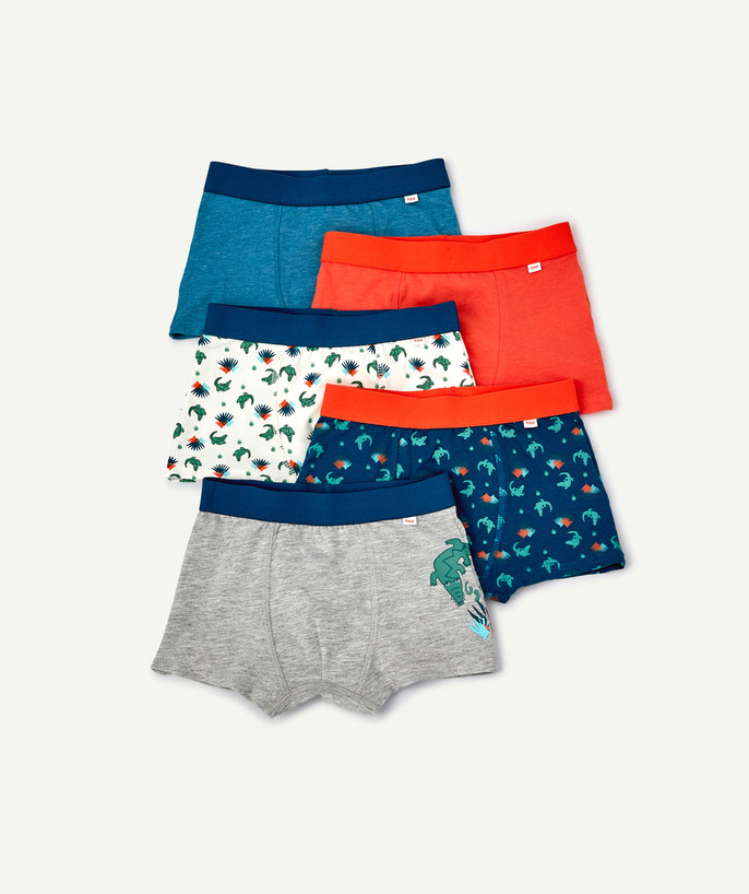 Underwear radius - FIVE PAIRS OF CROCODILE BOXER SHORTS IN ORGANIC COTTON