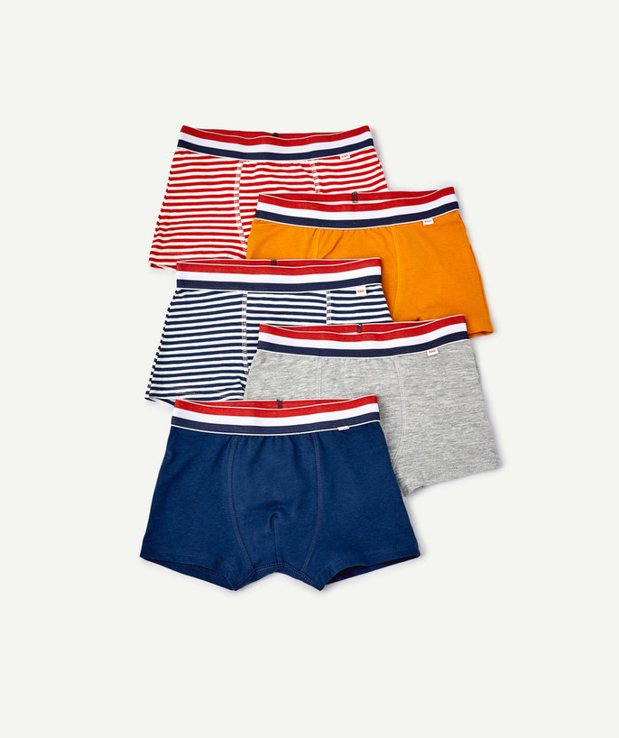 Underwear radius - FIVE PAIRS OF PLAIN AND STRIPED BOXER SHORTS IN ORGANIC COTTON