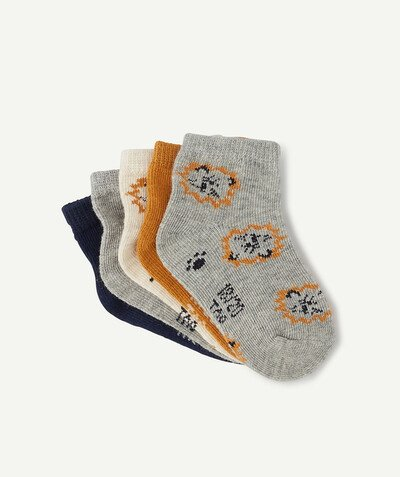All collection radius - FIVE PAIRS OF LION SOCKS