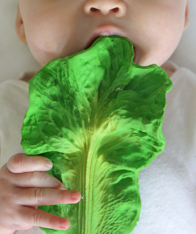 OLI & CAROL ® radius - OLI & CAROL® - CABBAGE LEAF TEETHING TOY