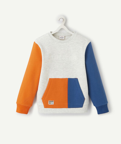 Sweatshirt radius - COLOUR BLOCK SWEATSHIRT IN ORGANIC COTTON