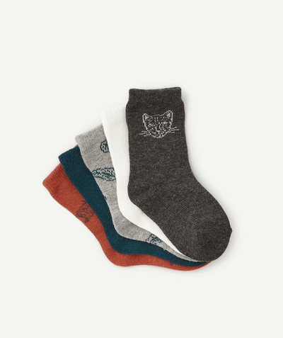 Accessories radius - PACK OF FIVE PAIRS OF PRINTED SOCKS